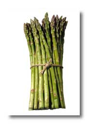 Bundle of asparagus spears